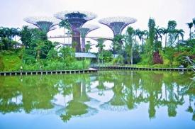 Singapore Super Trees.jpg